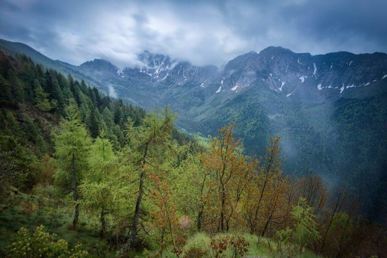 Ambiente Montano
