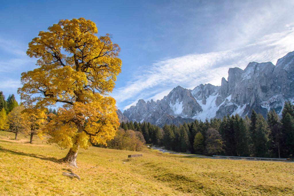 Paesaggi Montani ⋆ Andrea Pedretti